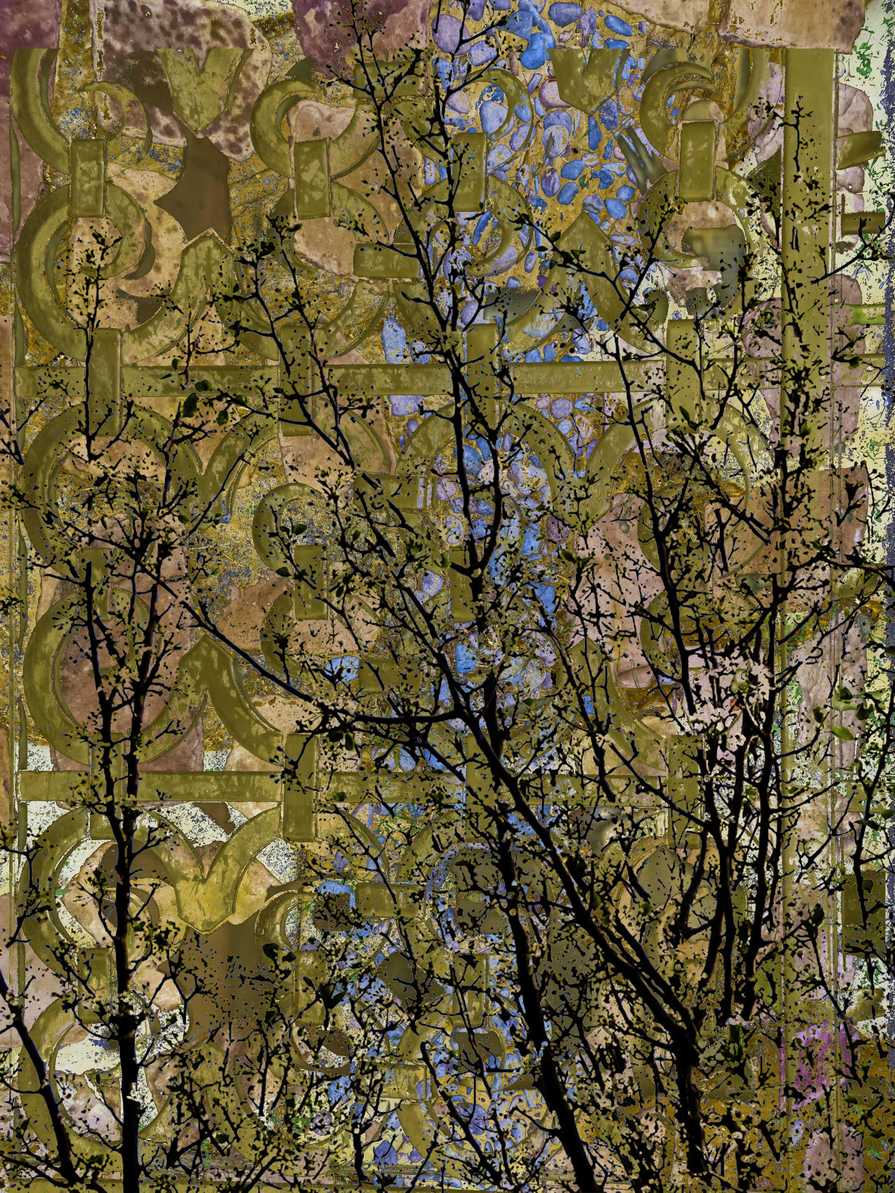 Blossoms FLW 32152 dswqq