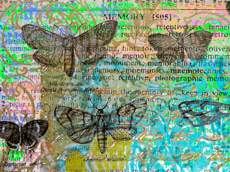 Butterflies & Memory FLW 51816