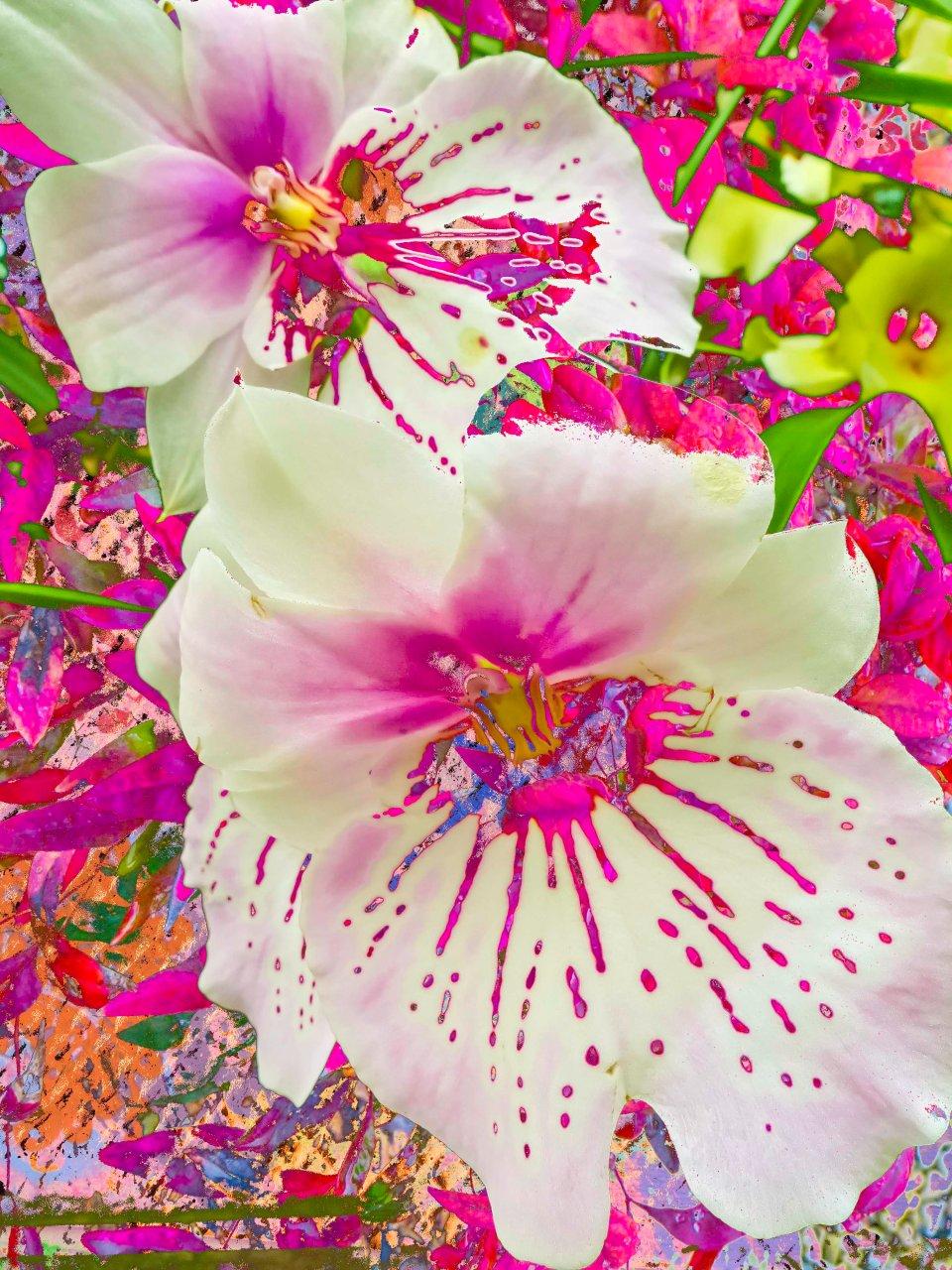 Fleur Mirage FLW 2210