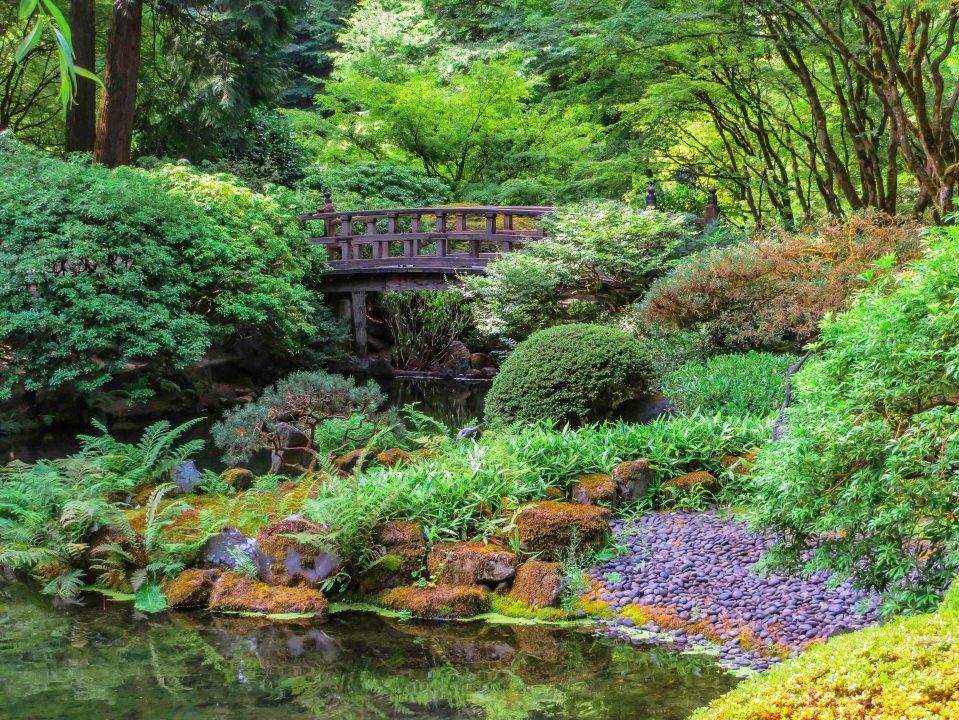 Japanese Garden FLW 3456