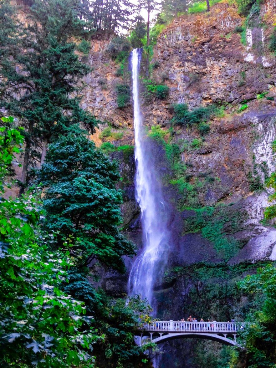 Multnomah Falls, OR FLW 3669