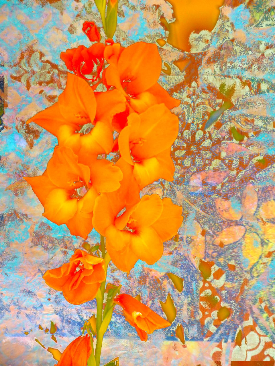 Orange FLowers FLW 22123 fghjtd.jpg