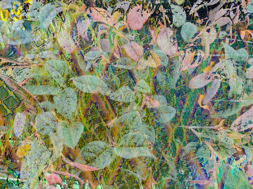 PlantUrban Abstract FLW 5454 zxyquaa.jpg