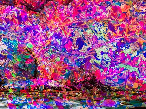 Abstract Sbrub FLW 2006 fwwqf.jpg