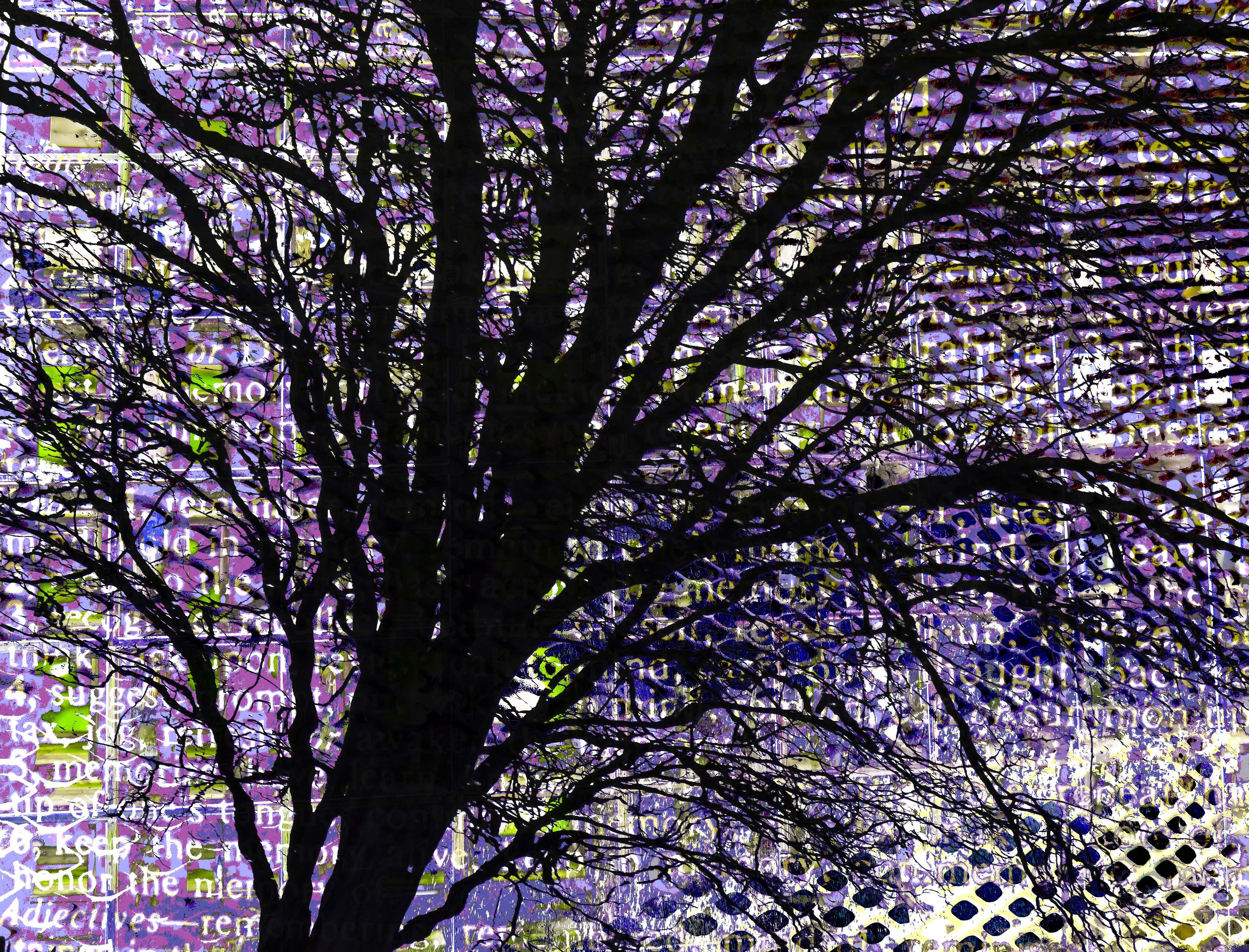 Memory Tree FLW 3887 datiff.jpg