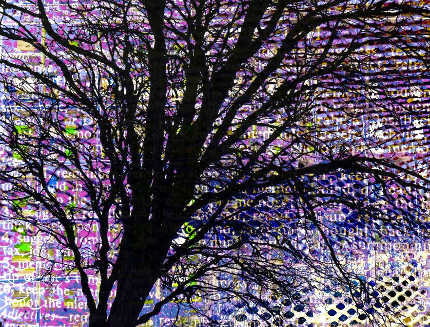 Memory Tree FLW 3887 datiff.jpg
