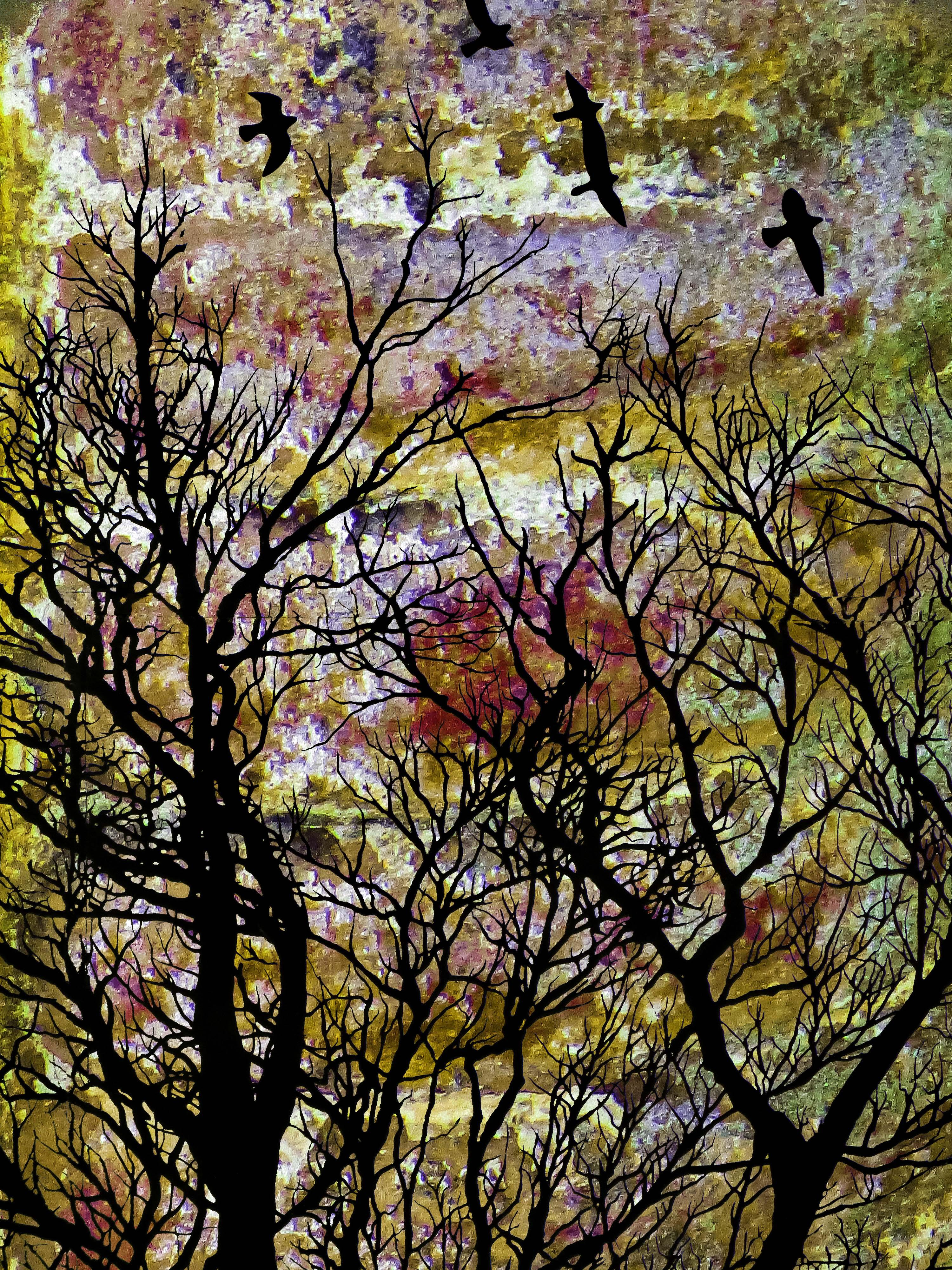 TreeScene FLW 97632 kjytgbcxzyyy.jpg