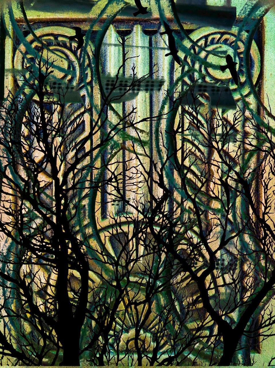 TreesScene FLW 5667 jnhgb.jpg
