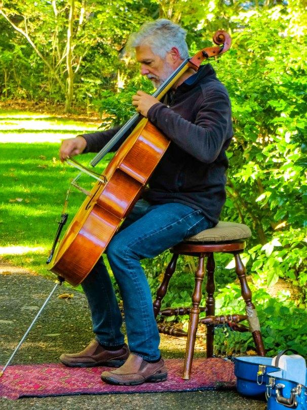 cellist-flw-30973790-gbhnjmnop