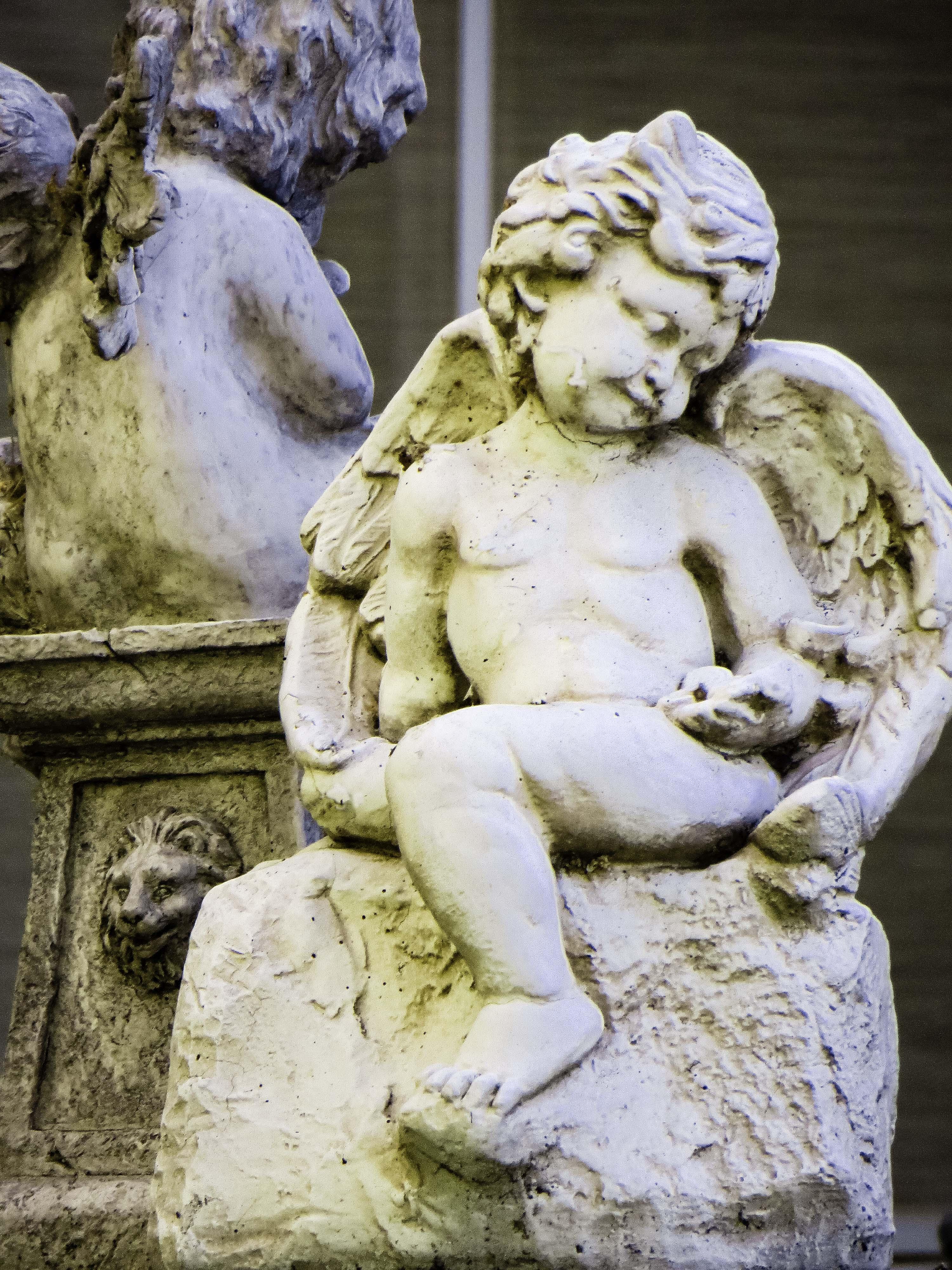 Sleeping Angel FLW 48804 kloytttyi.jpg