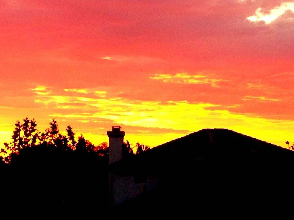 sunseteg-flw-21098-fvbnmou