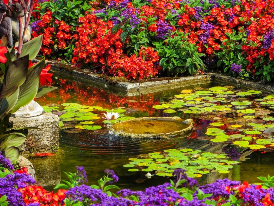 butchart pond.jpg