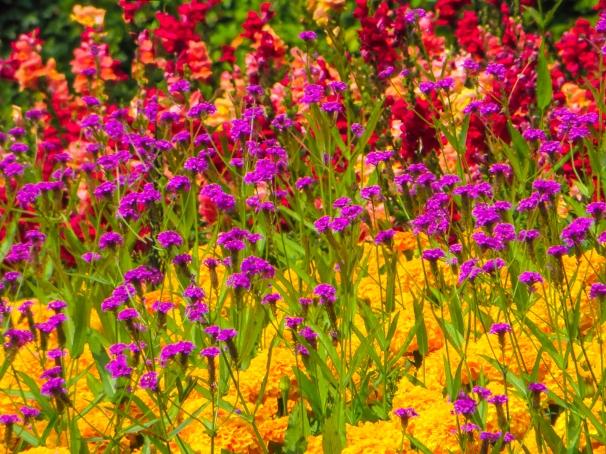 BUTCHART FLOWERS