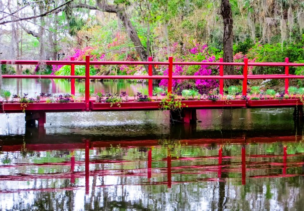 CHS MagnoliaHall bridge1.jpg