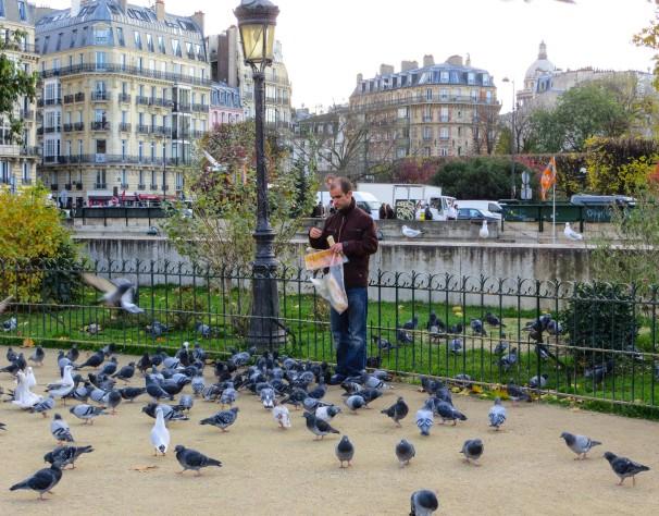 PARIS PIGEONGUY 11.12.jpg